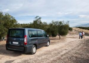 visitas-olivar